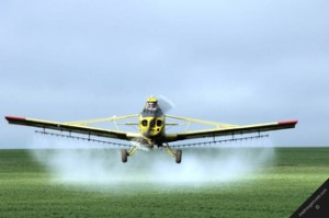 Wat doen Pesticiden onze Prachtige Kleinkinderen aan