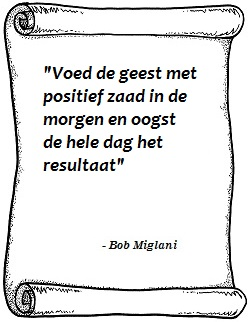 Voed de geest Bob Miglani
