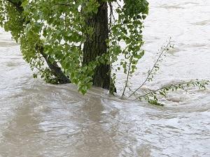 Regen en overstromingen