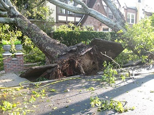 Tornado in de VS