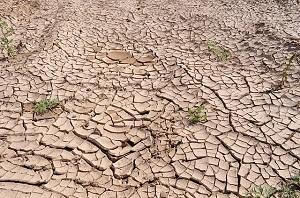extreme droogte in de hoorn van afrika